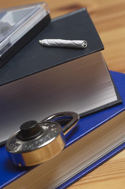 Las adicciones y su incidencia en las relaciones de trabajo.